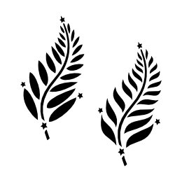 Silver fern & southern cross tattoo