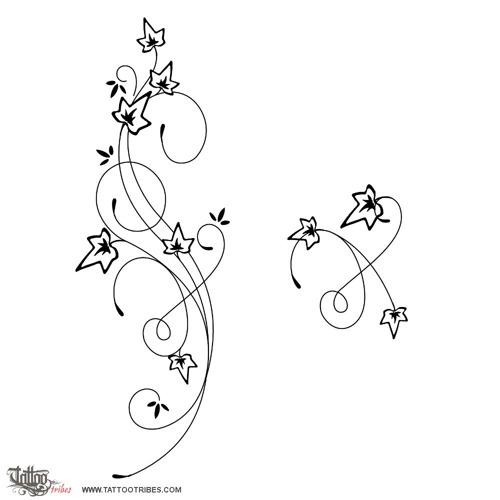 Ivy tattoo drawings ivy tattoo top by iluvdevilschild designs ivy tattoo drawings ivy tattoo top by iluvdevilschild designs interfaces tattoo design drawing 2 pinterest ivy tattoo tattoo drawings and buycottarizona Gallery